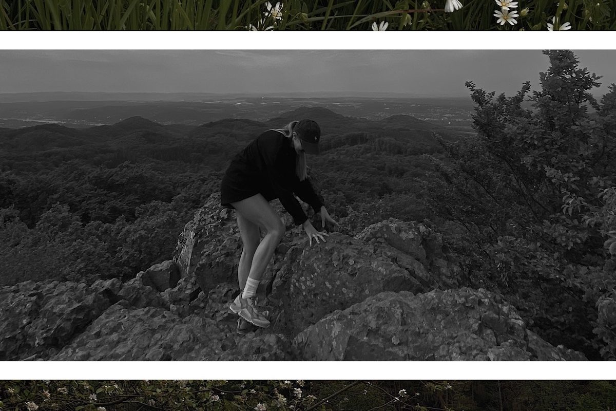 Into the Woods   Lisa Fiege   Blog & Creative Studio